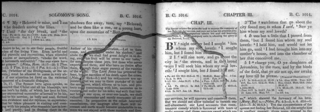 Trail of a bookworm in Solomon's Song, chapter III