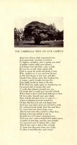 Umbrella Tree Poem from the 1909 Quips & Cranks, picture of the tree on top of the vertically oriented text.