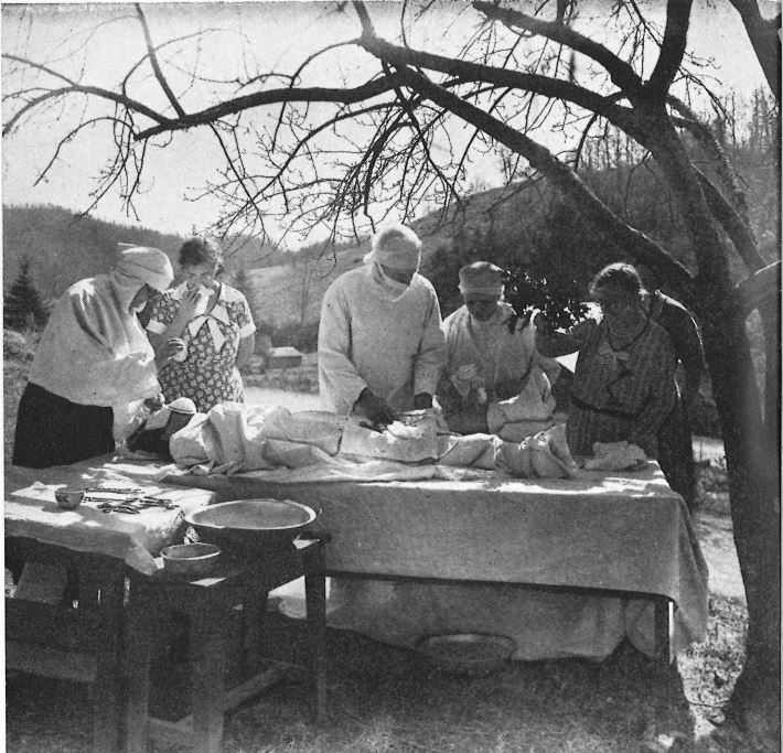 black and white image of operation under an apple tree